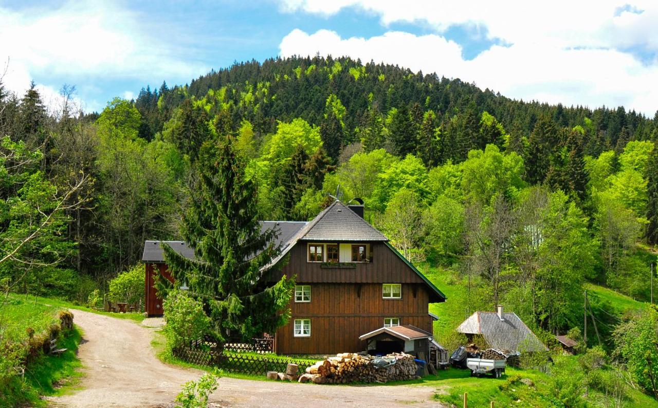 Дом для отпуска  Ferienhaus Hinterzarten