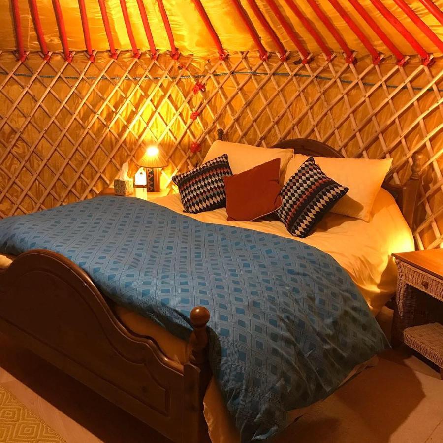 Люкс-шатер  McClure Yurt At Carrigeen Glamping