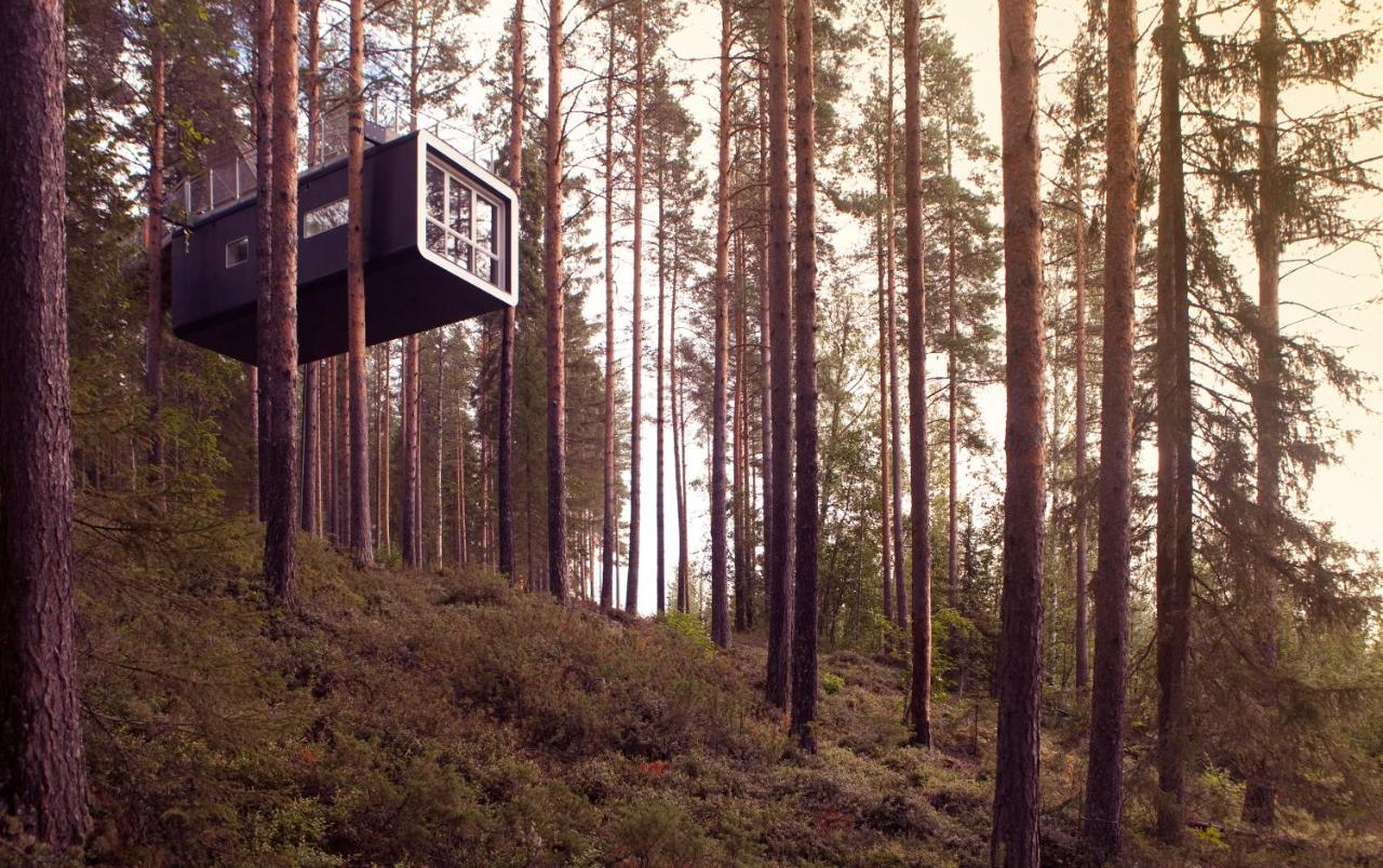 Treehotel, Harads – Updated 2020 Prices