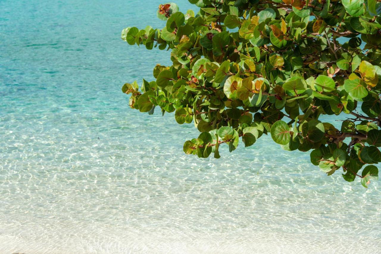 Отель  Grand Case Beach Club  - отзывы Booking
