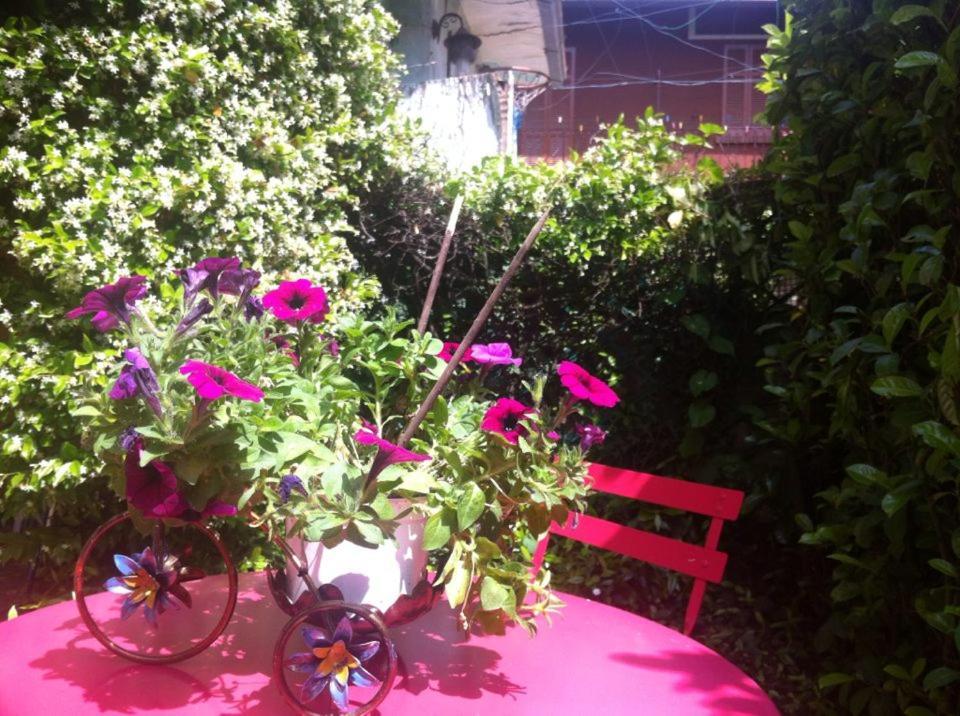 Дом для отпуска  Appartamento Lago Maggiore  - отзывы Booking