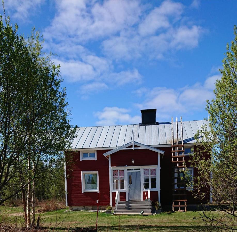 Фото  Загородный дом  The House Near Arctic Circle