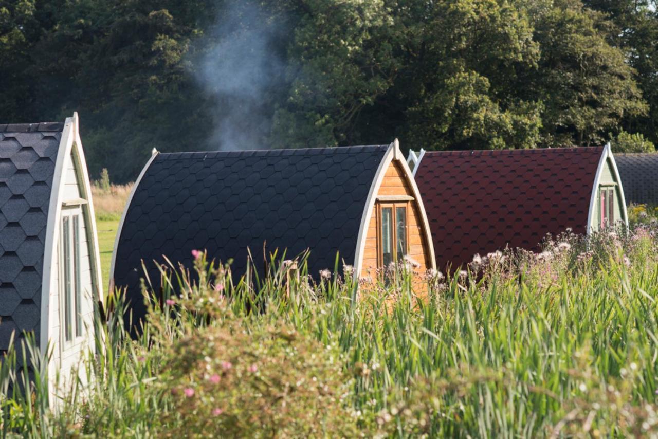 Кемпинг  (12) Camping Pod Near Lake