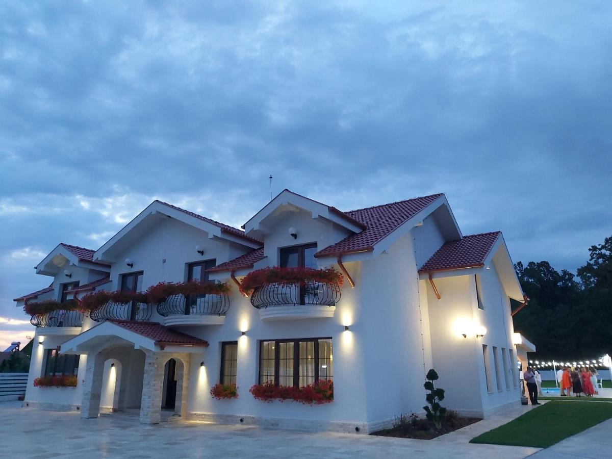 Гостевой дом Pensiunea Hanna
