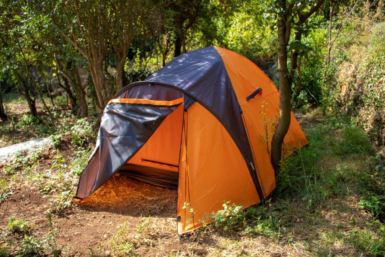 Кемпинг  Auto Camp Radoman