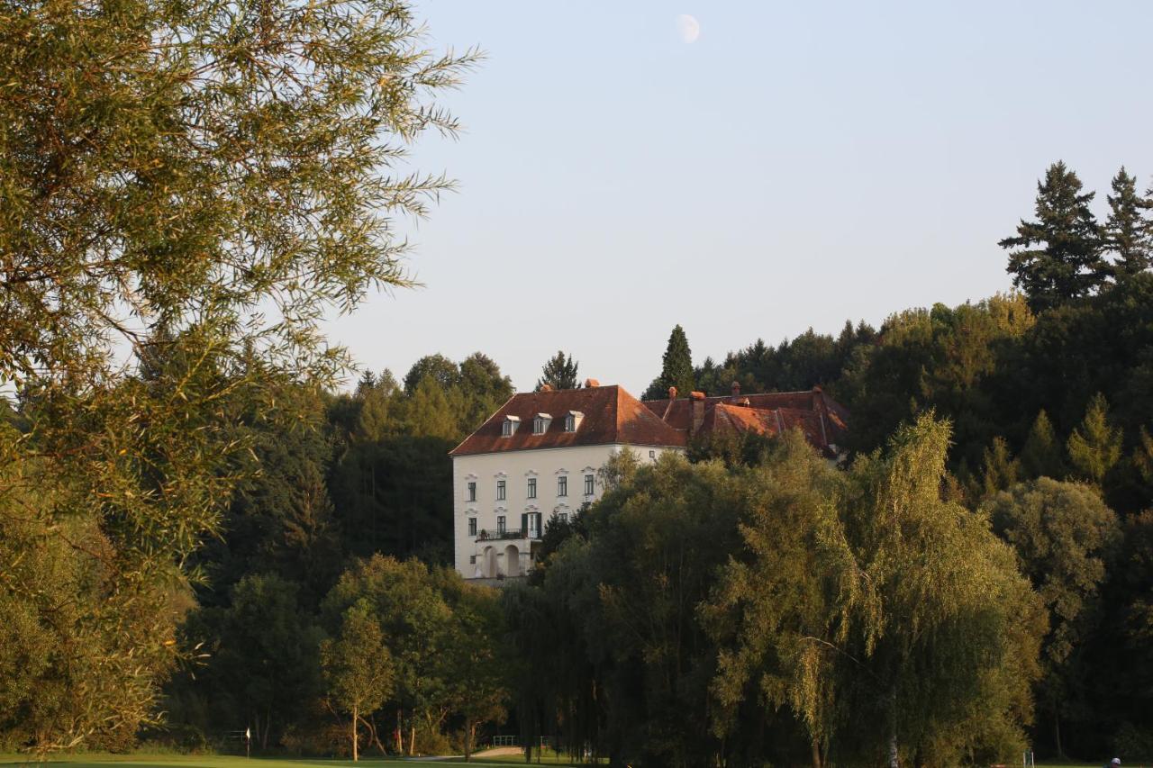 Отель  Schloss Ernegg
