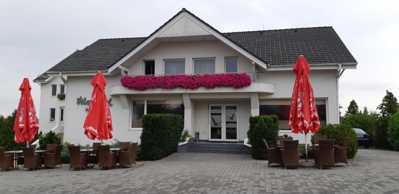 Отель  Vila Vlad