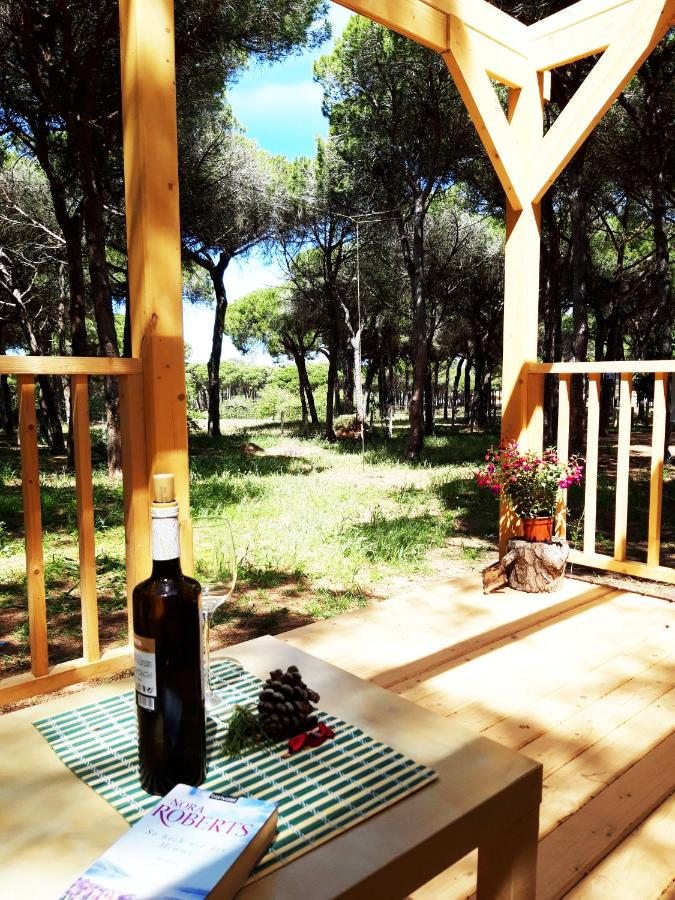 Дом для отпуска  The PineForest Cabin