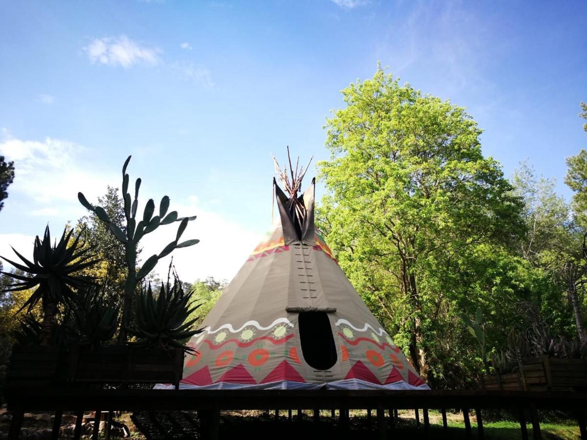 Фото  Люкс-шатер  Magical Teepee Experience In Hogsback!