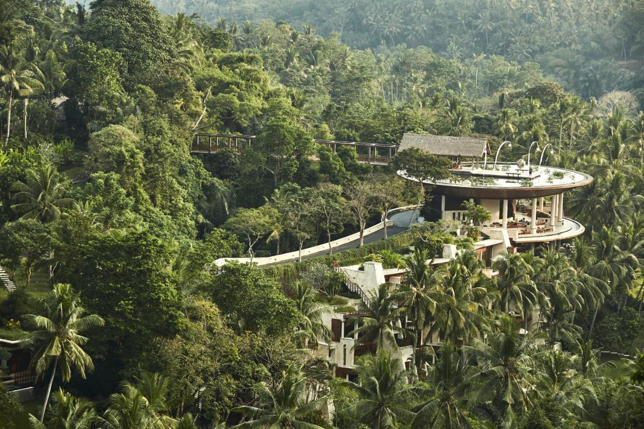 225671144 - Hotel Ditengah Hutan Terkeren Dunia Yang Bikin Happy
