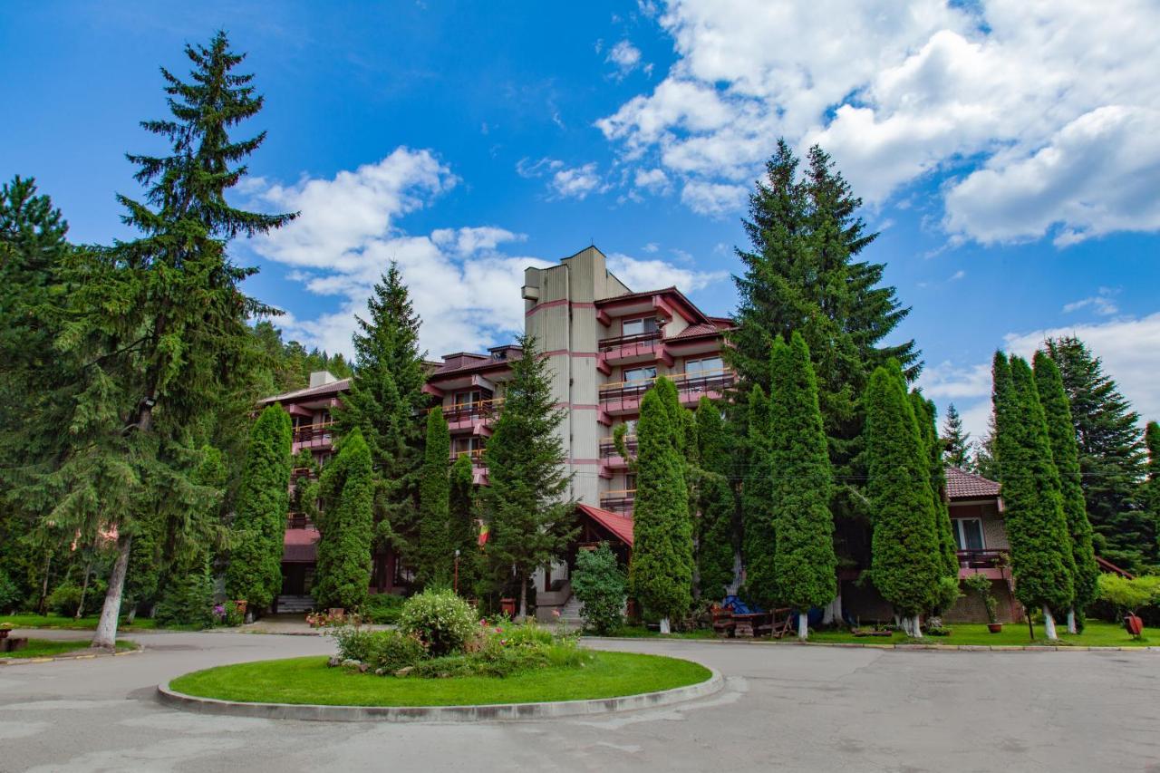 Хостел  Hostel Alex - Complex Dumbrava Minunata  - отзывы Booking
