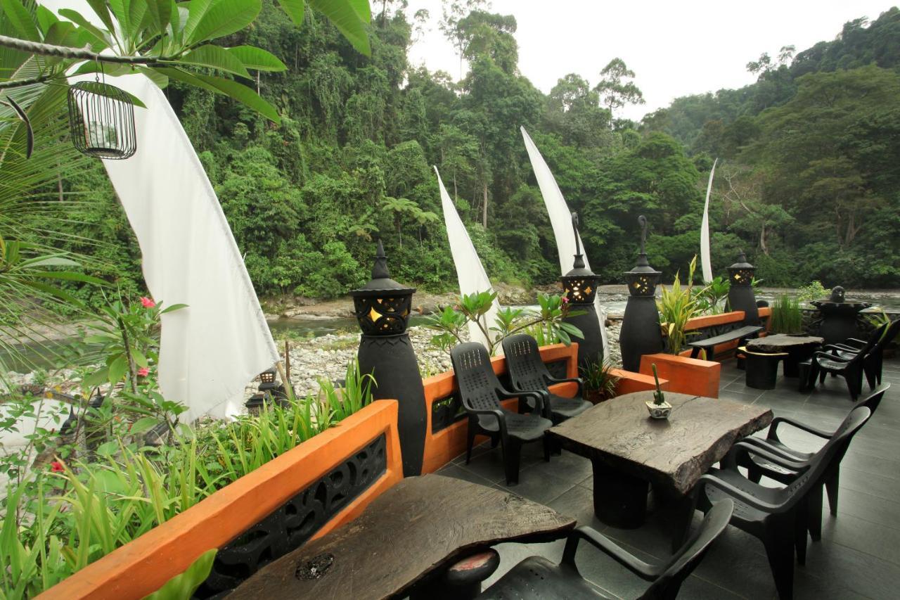 Отель  Jungle Inn  - отзывы Booking
