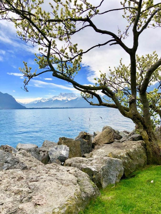 Апартаменты/квартиры  Montreux lake view apartment  - отзывы Booking