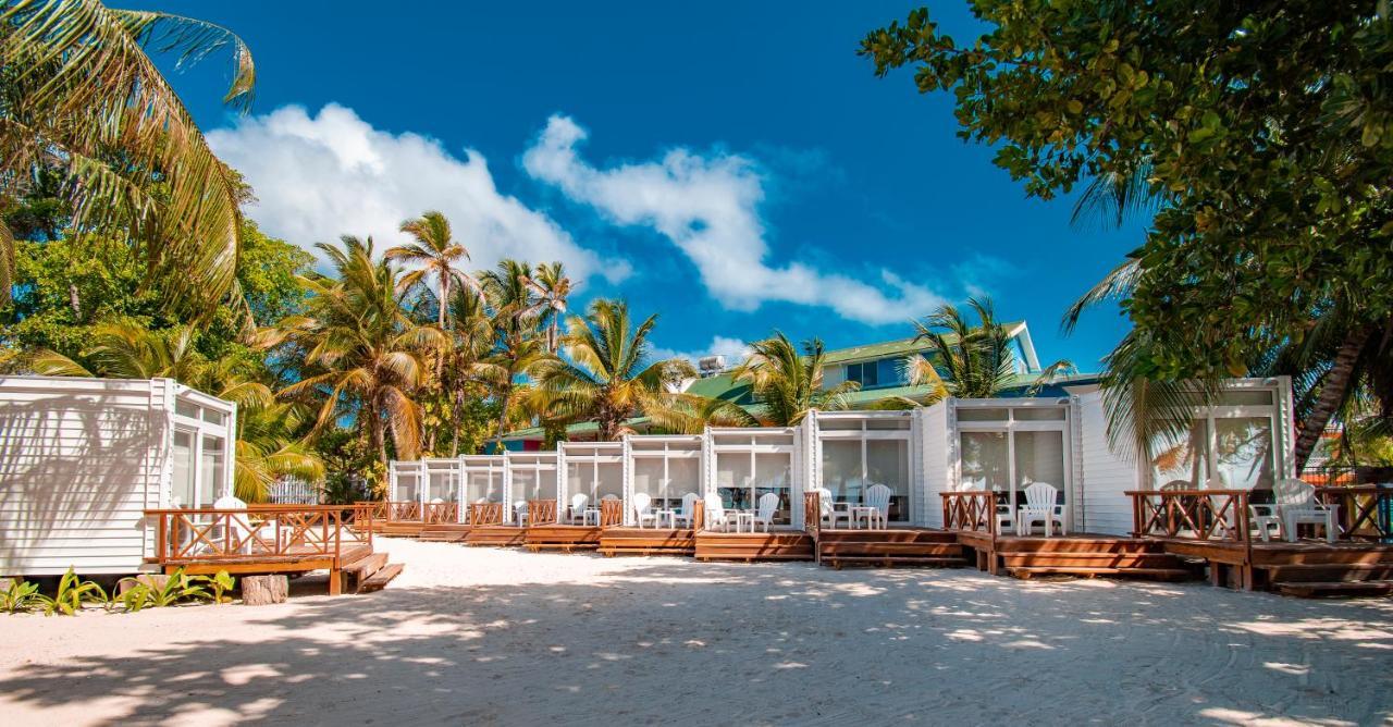 Отель  Отель  Hotel Reina Del Mar By Dorado