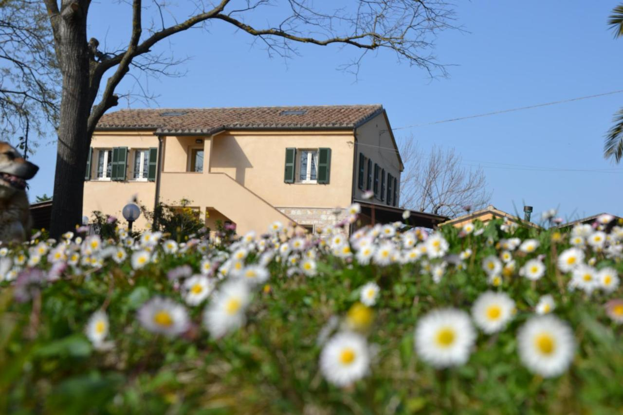 Фермерский дом  Фермерский дом  Agriturismo Il Mandorlo