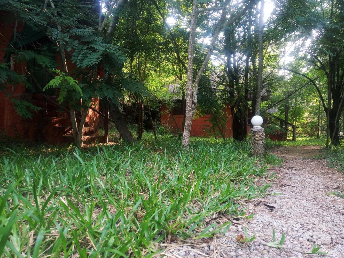 Gosana Eco Nature