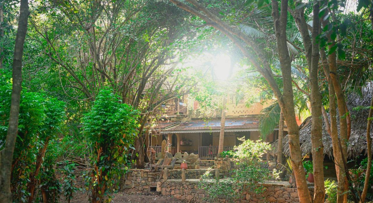 Гостевой дом  Gem River Edge - Eco home and Safari  - отзывы Booking