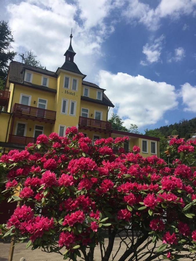 Фото Отель Hotel Sieben Linden
