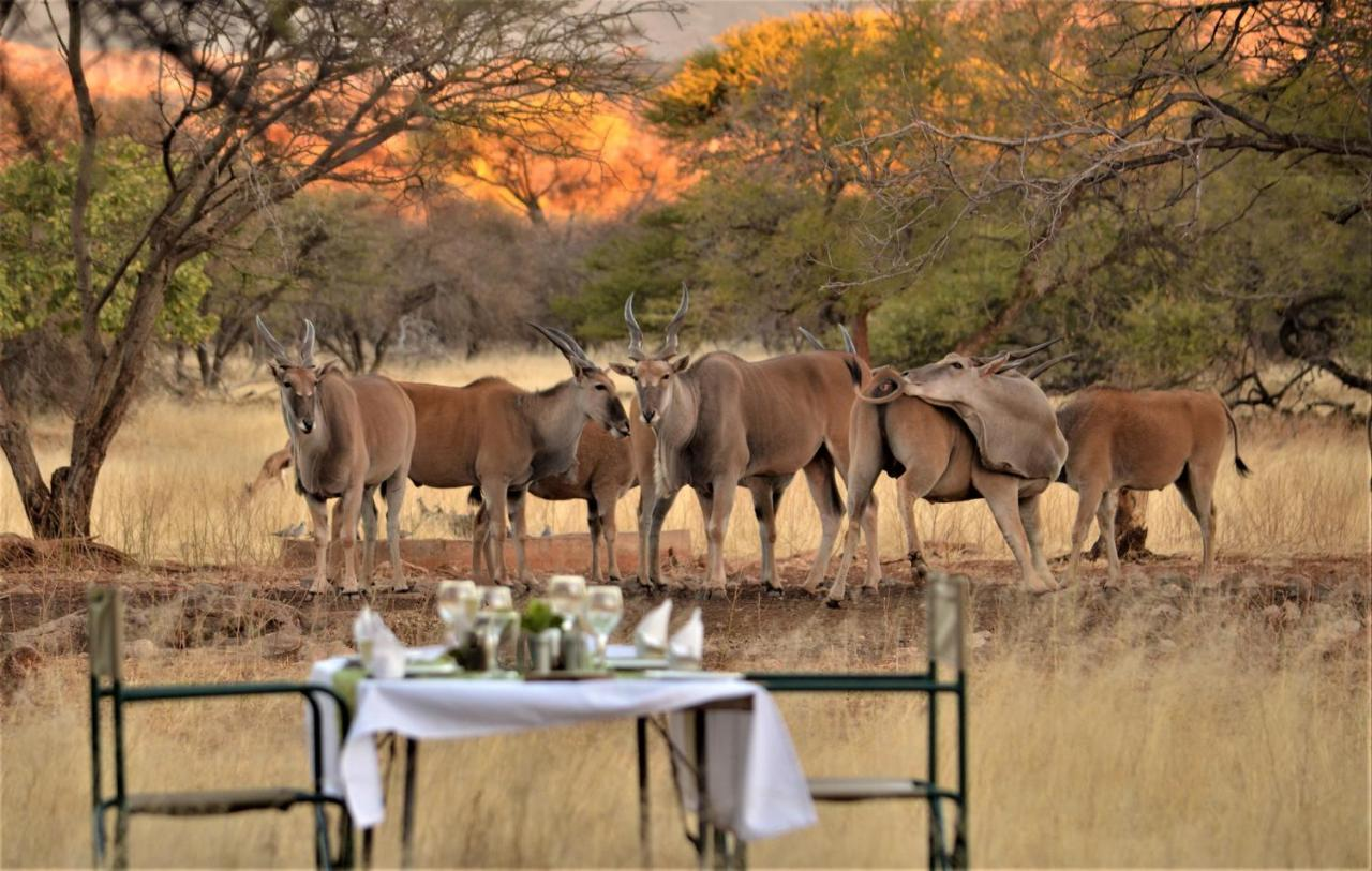 Лодж  Ohange Namibia Lodge  - отзывы Booking