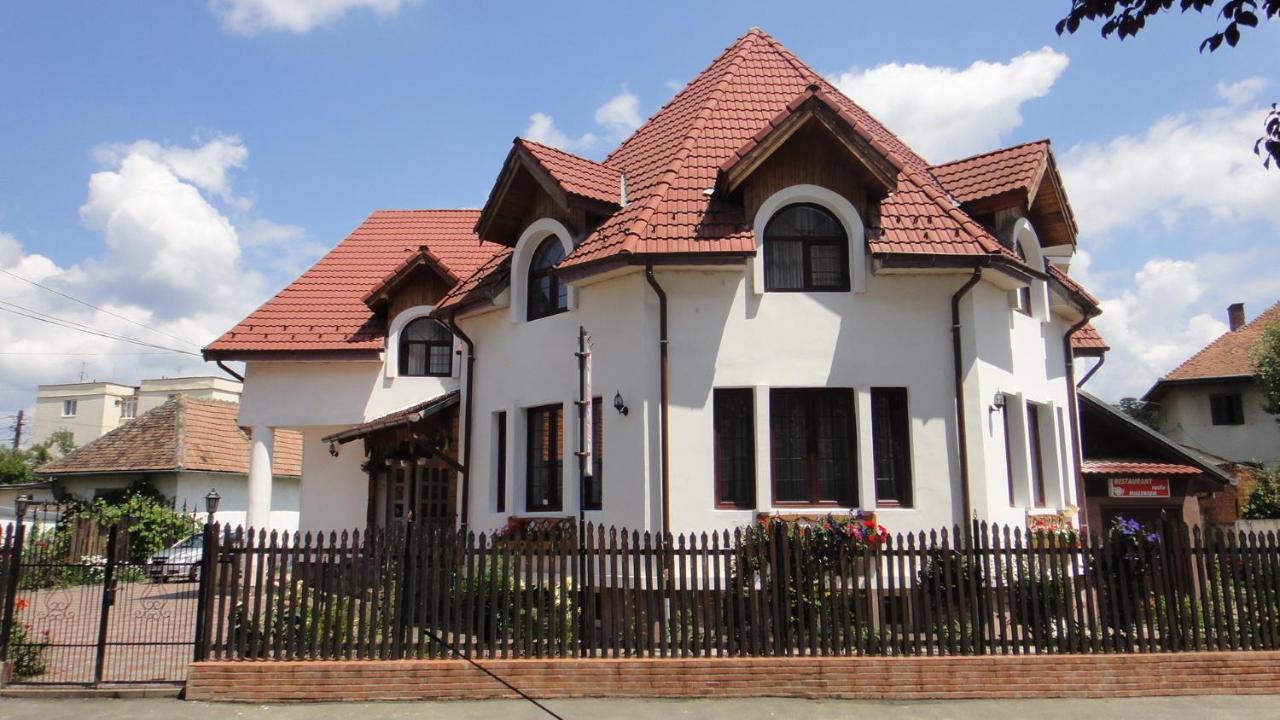 Гостевой дом  Pensiunea Millenium