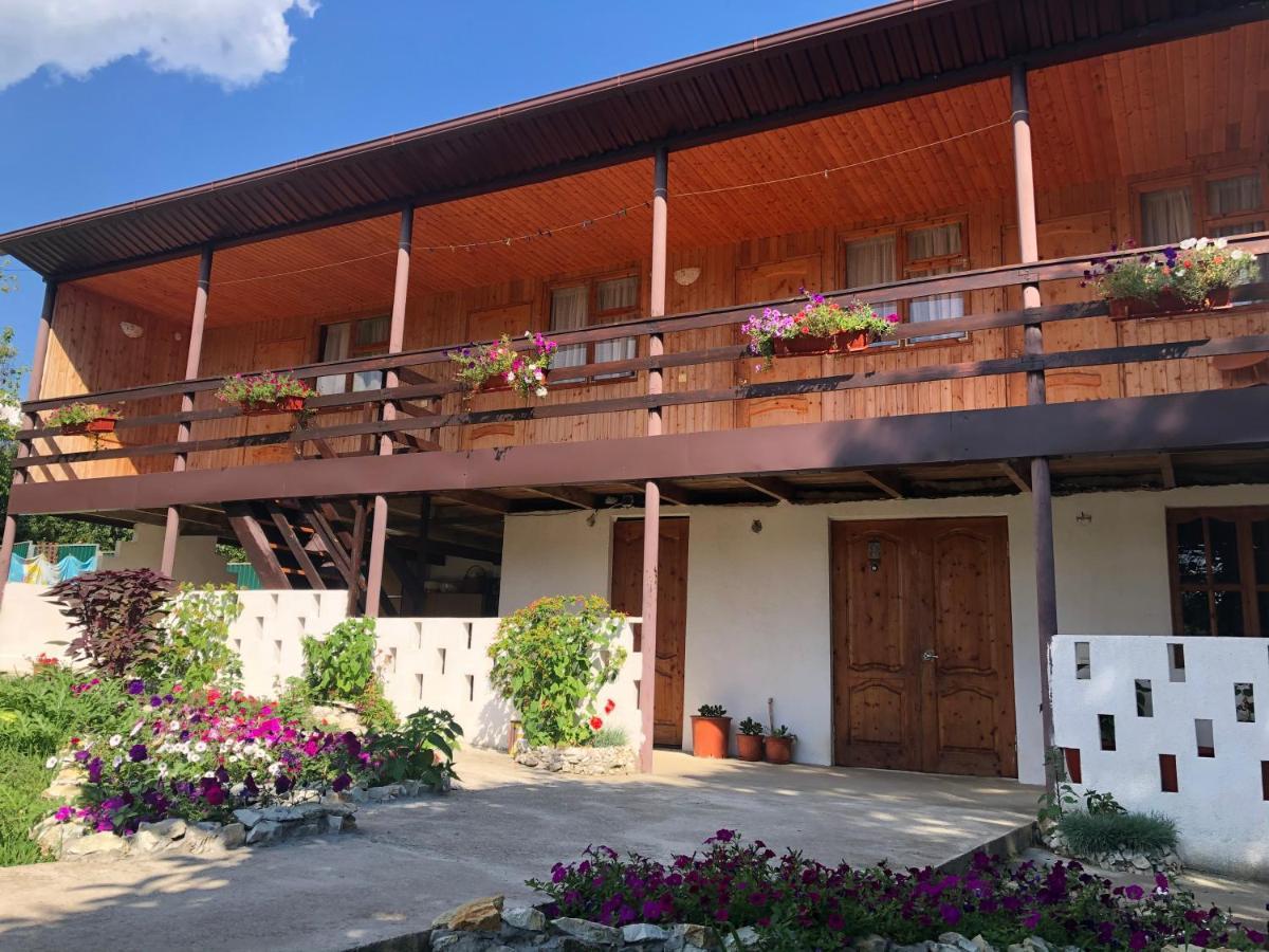 Гостевой дом Guest House Golden Beach - отзывы Booking