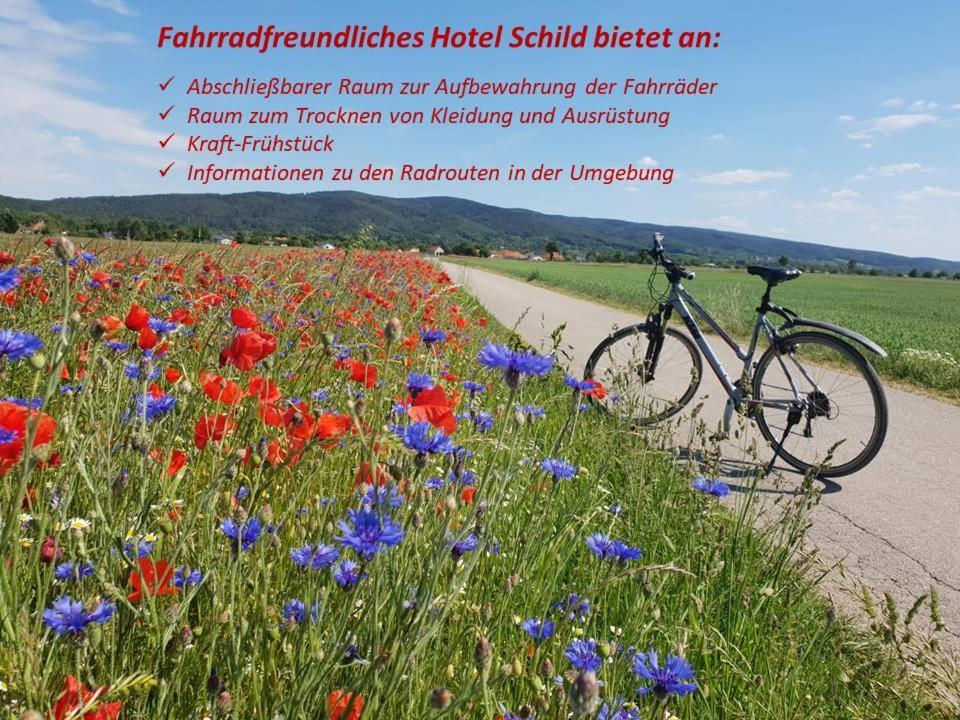 Отель  Hotel Schild