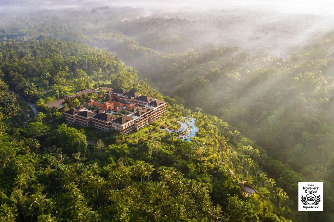Курортный отель  Padma Resort Ubud  - отзывы Booking