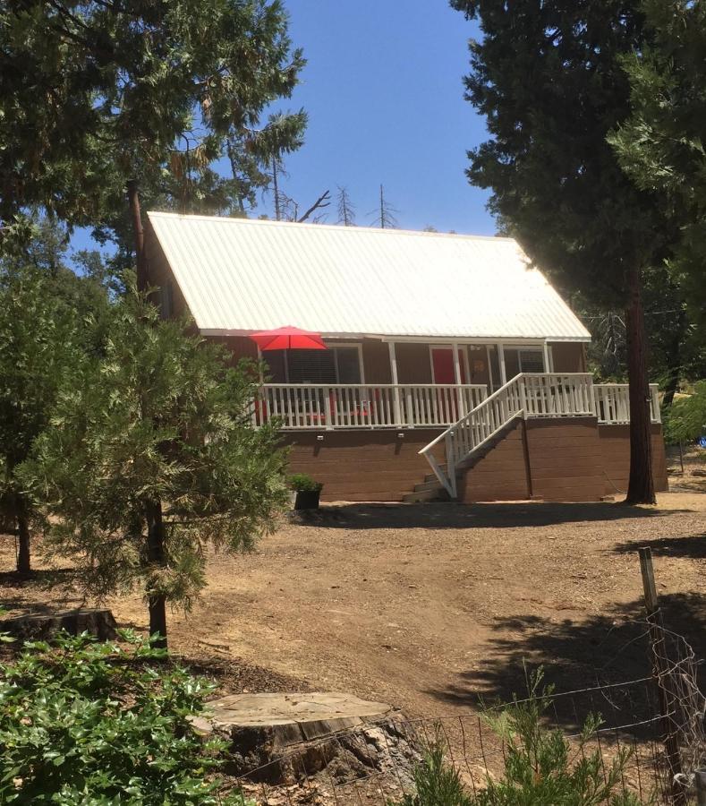 Дом для отпуска  Acorn Rd Cabin with mountain views  - отзывы Booking
