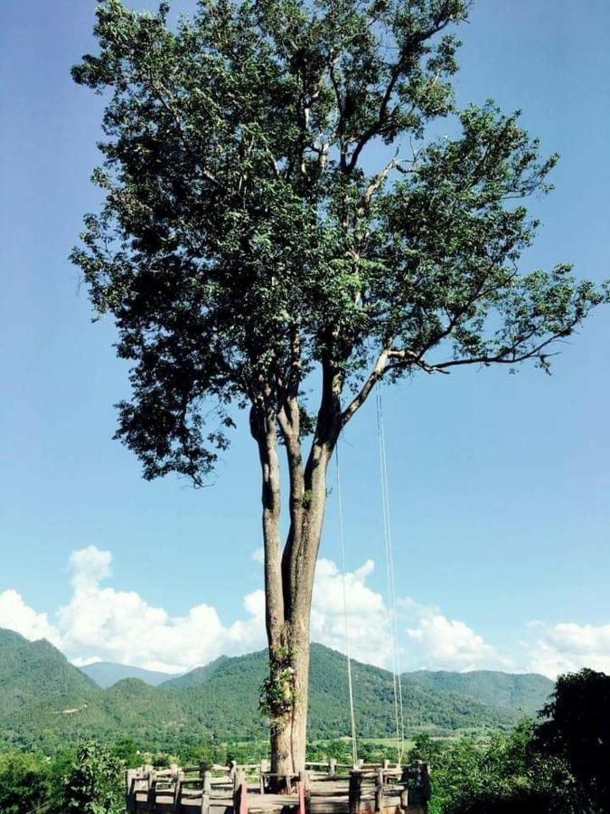 Комплекс для отдыха  Mari Pai Resort