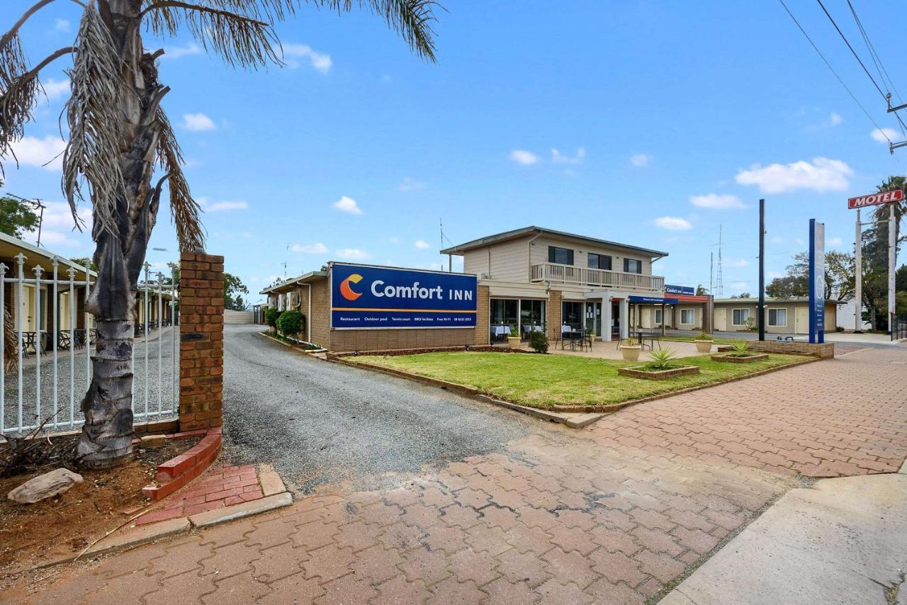 Отель  Comfort Inn Flinders on Main  - отзывы Booking