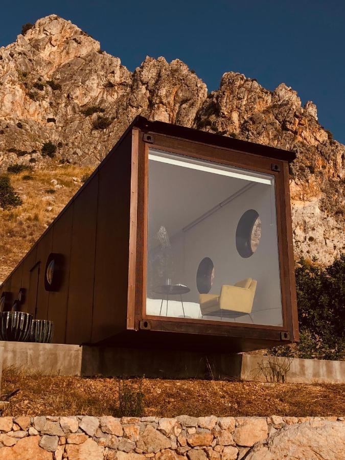 Люкс-шатер  Container Suite