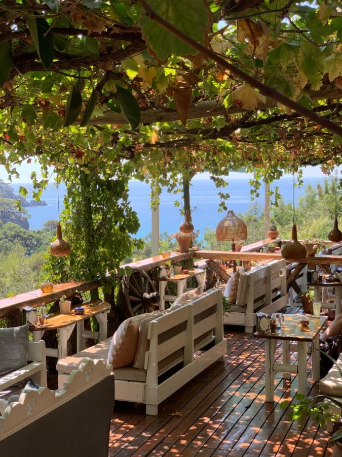 Комплекс для отдыха  Turan Hill Lounge