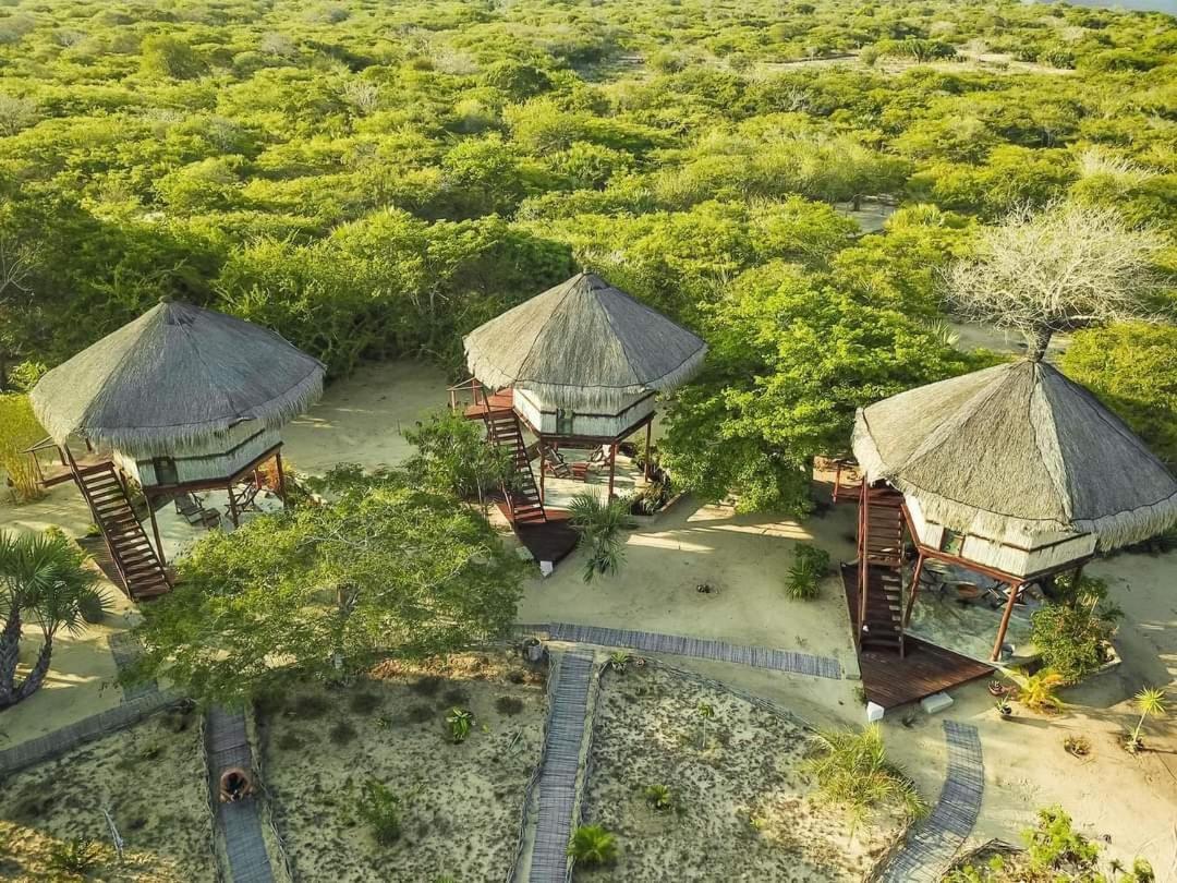 Отель  Marimba Secret Gardens