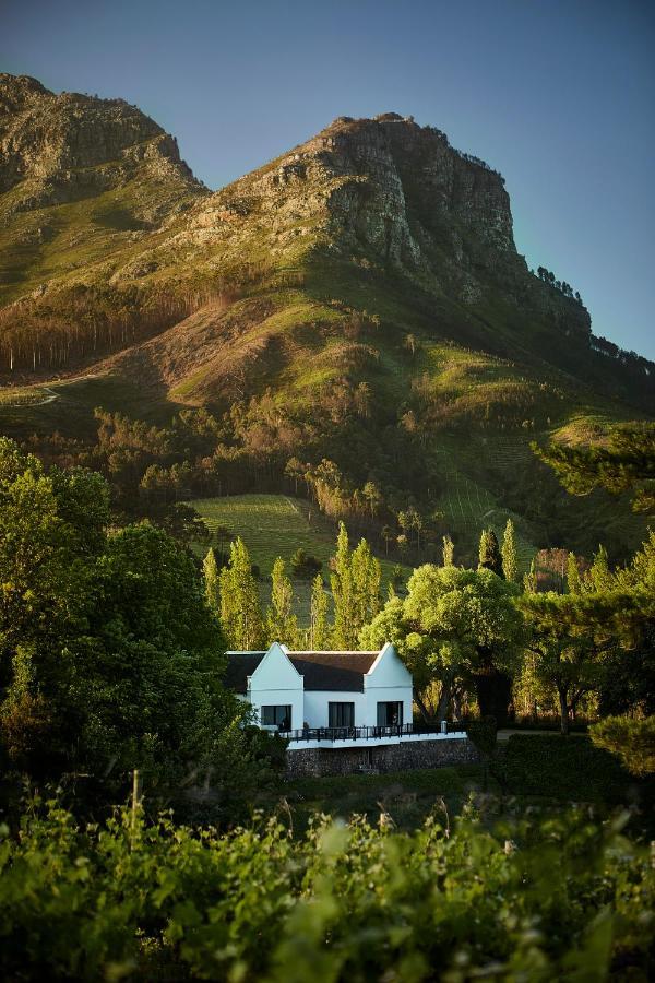 Гостевой дом MolenVliet Vineyards