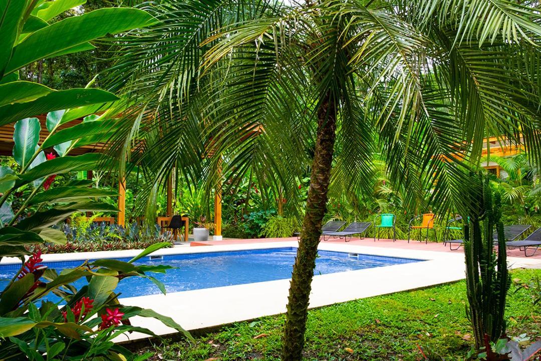Отель типа «постель и завтрак»  La Paz del Caribe  - отзывы Booking