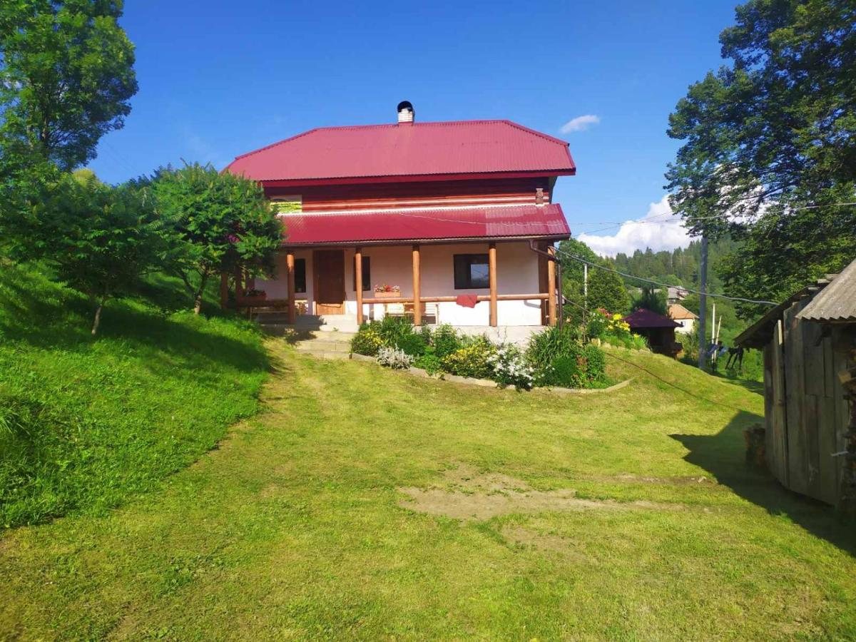 Гостевой дом  Бабусин Двір  - отзывы Booking