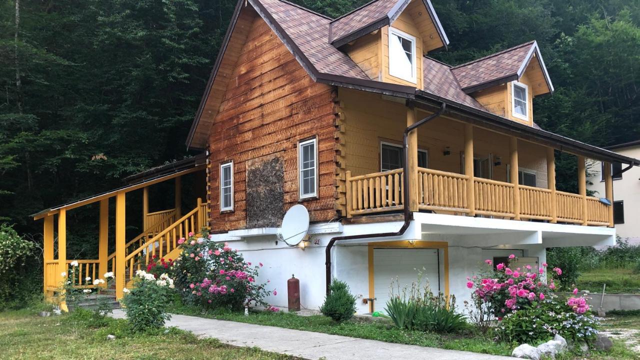 Фото Гостевой дом Alpine Village Sochi