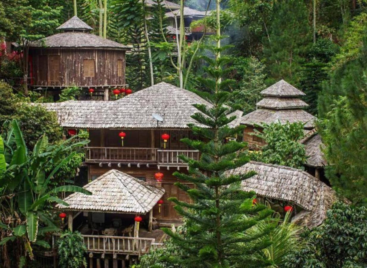 Курортный отель  Fig Tree Hills Resort (花果山度假村)