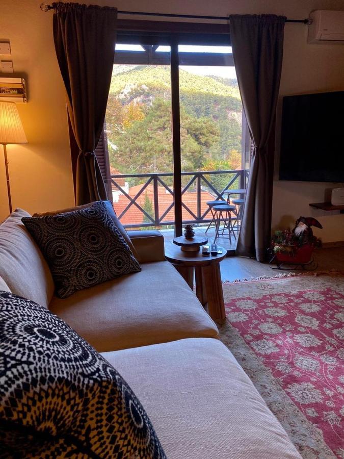 Апартаменты/квартира Cozy Mountain Apartment In Platres