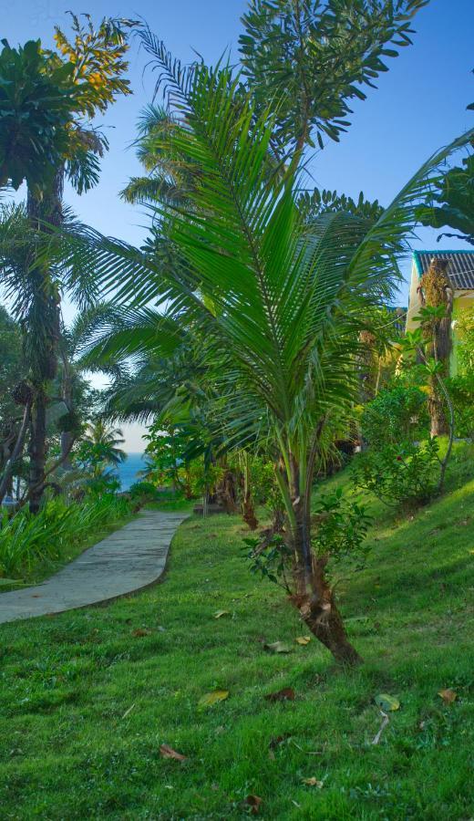 Курортный отель  Sea View Resort  - отзывы Booking
