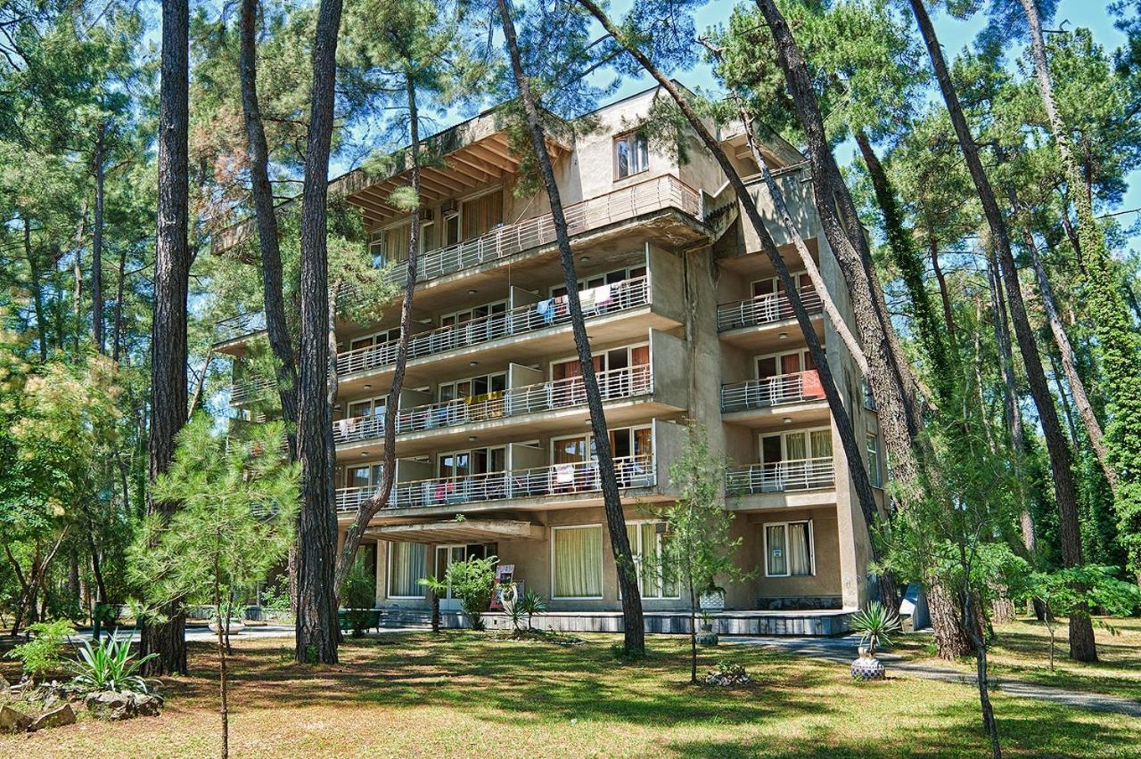 Отель Госдача ЛДЗАА - отзывы Booking