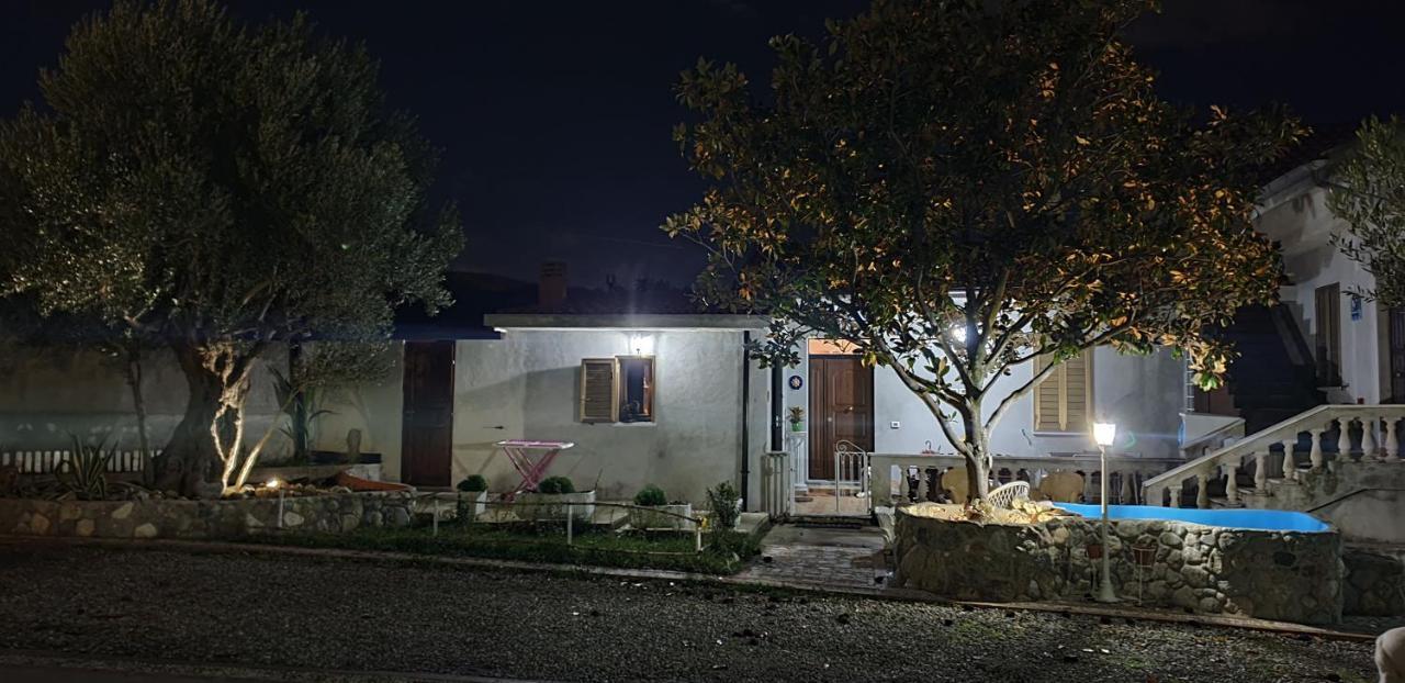 Проживание в семье  Villa Magnolia