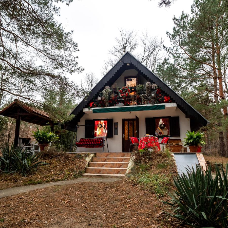 Лодж  Ladybird Lodge  - отзывы Booking