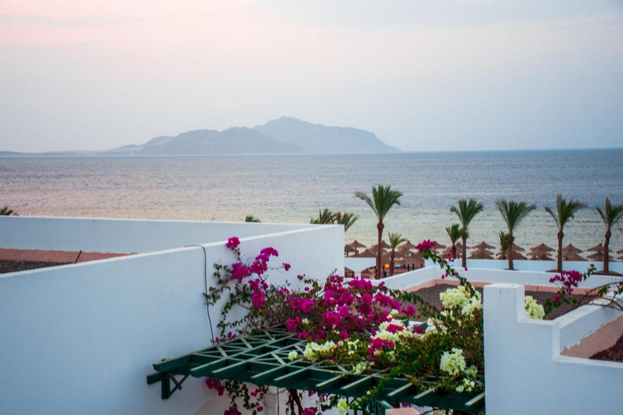Курортный отель  Coral Beach Resort Montazah (Ex. Rotana)  - отзывы Booking