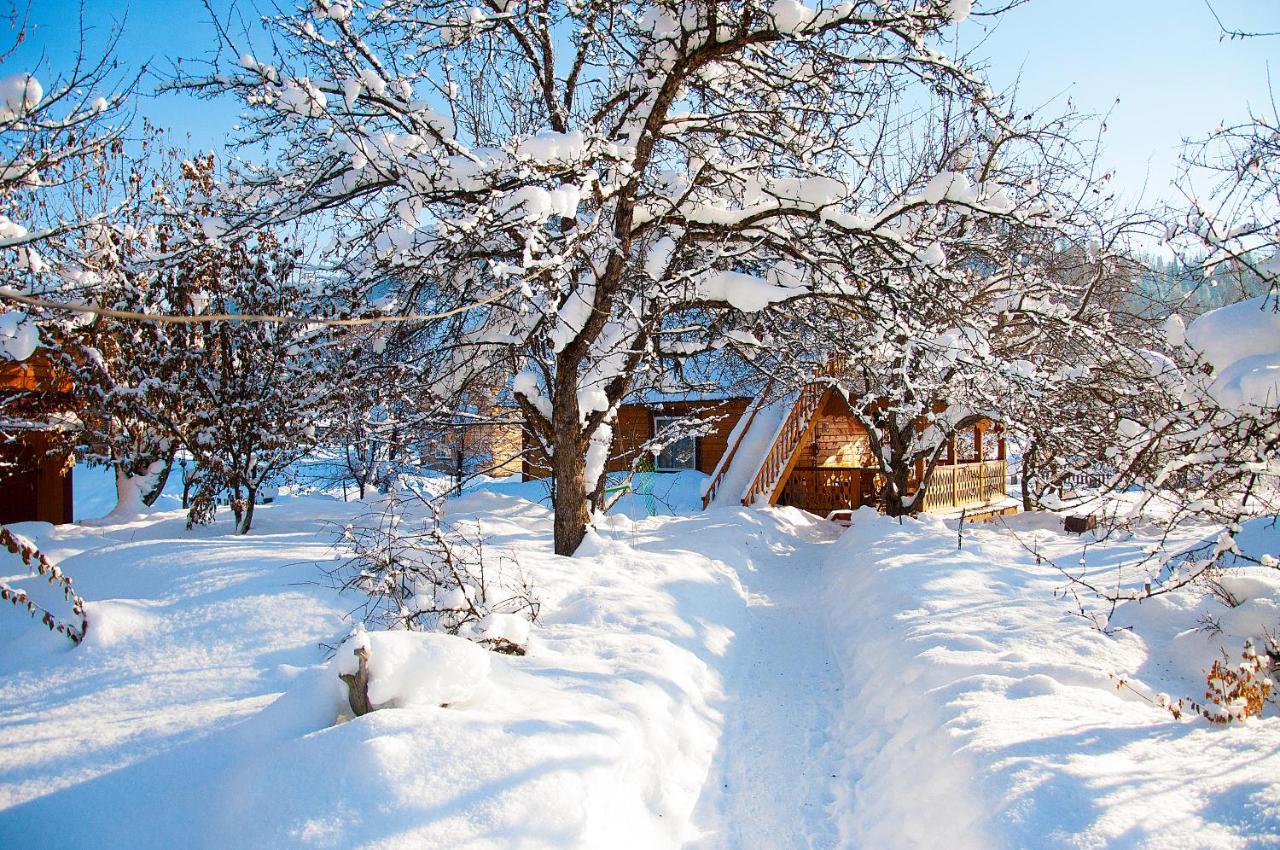 Дом для отпуска  Дом в саду  - отзывы Booking