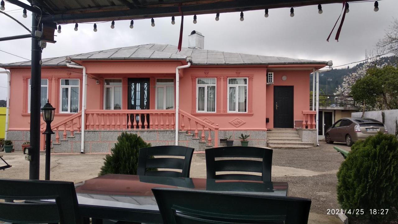 Гостевой дом  Kemeni Guest House  - отзывы Booking