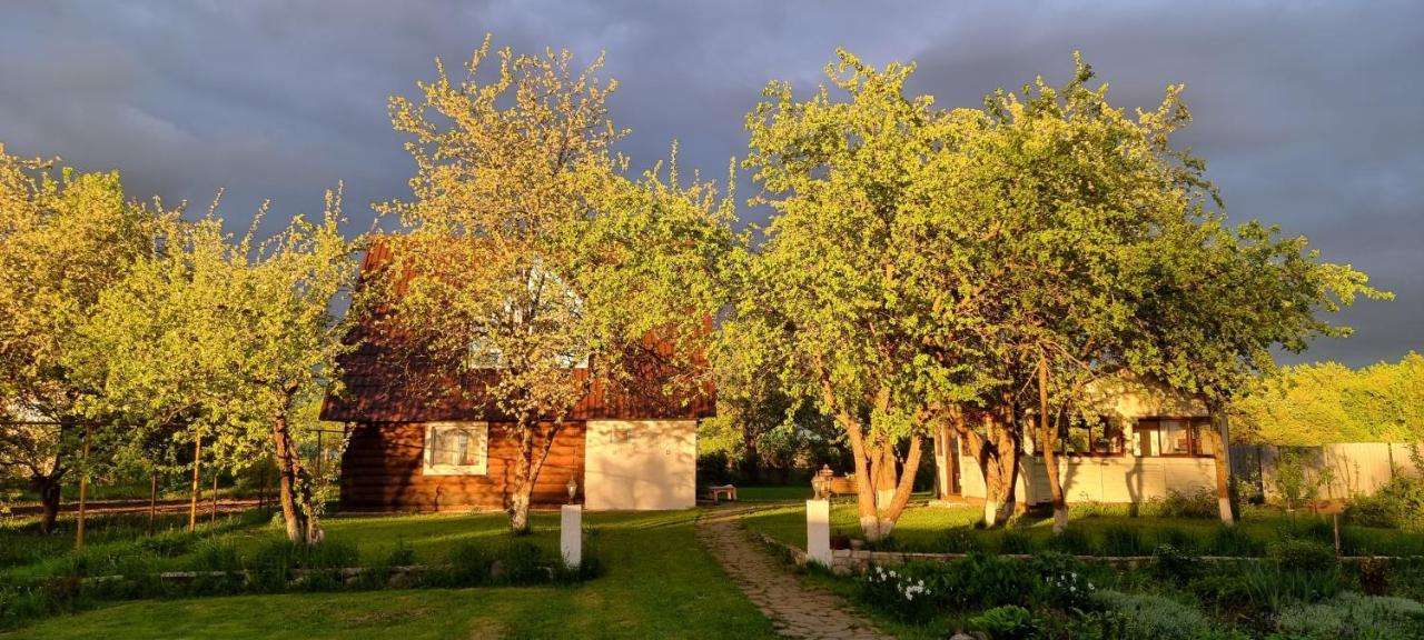 Дом для отпуска Гостевой дом на Михалях - отзывы Booking