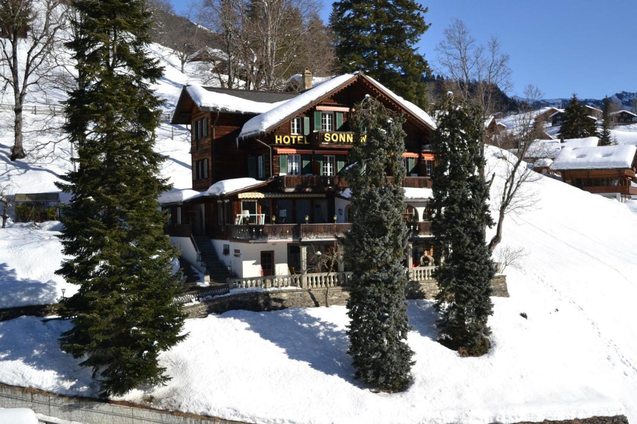 Мини-гостиница Hotel Sonnenberg - отзывы Booking