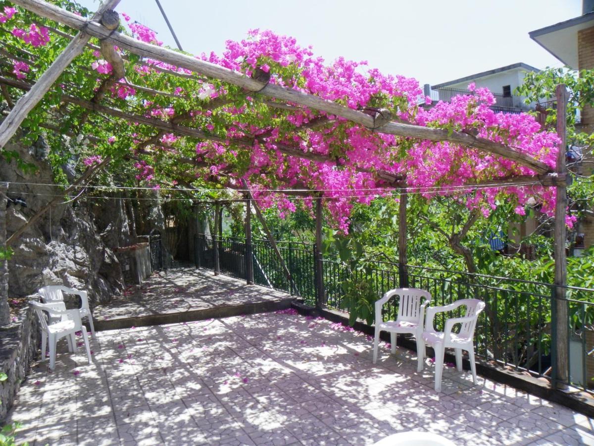 Дома для отпуска  Maiori Dreams