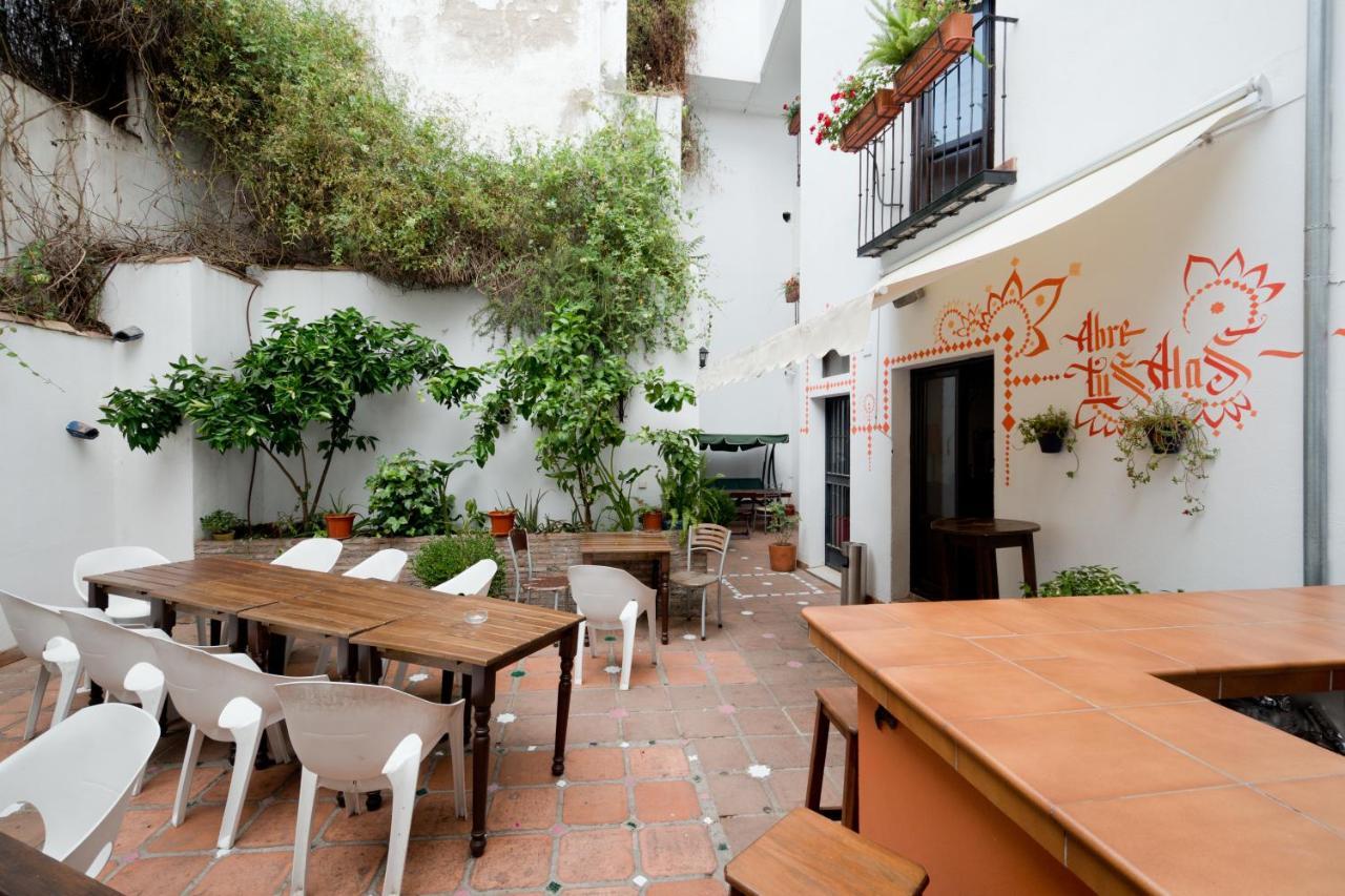 Хостел  Хостел  Oasis Backpackers' Hostel Granada